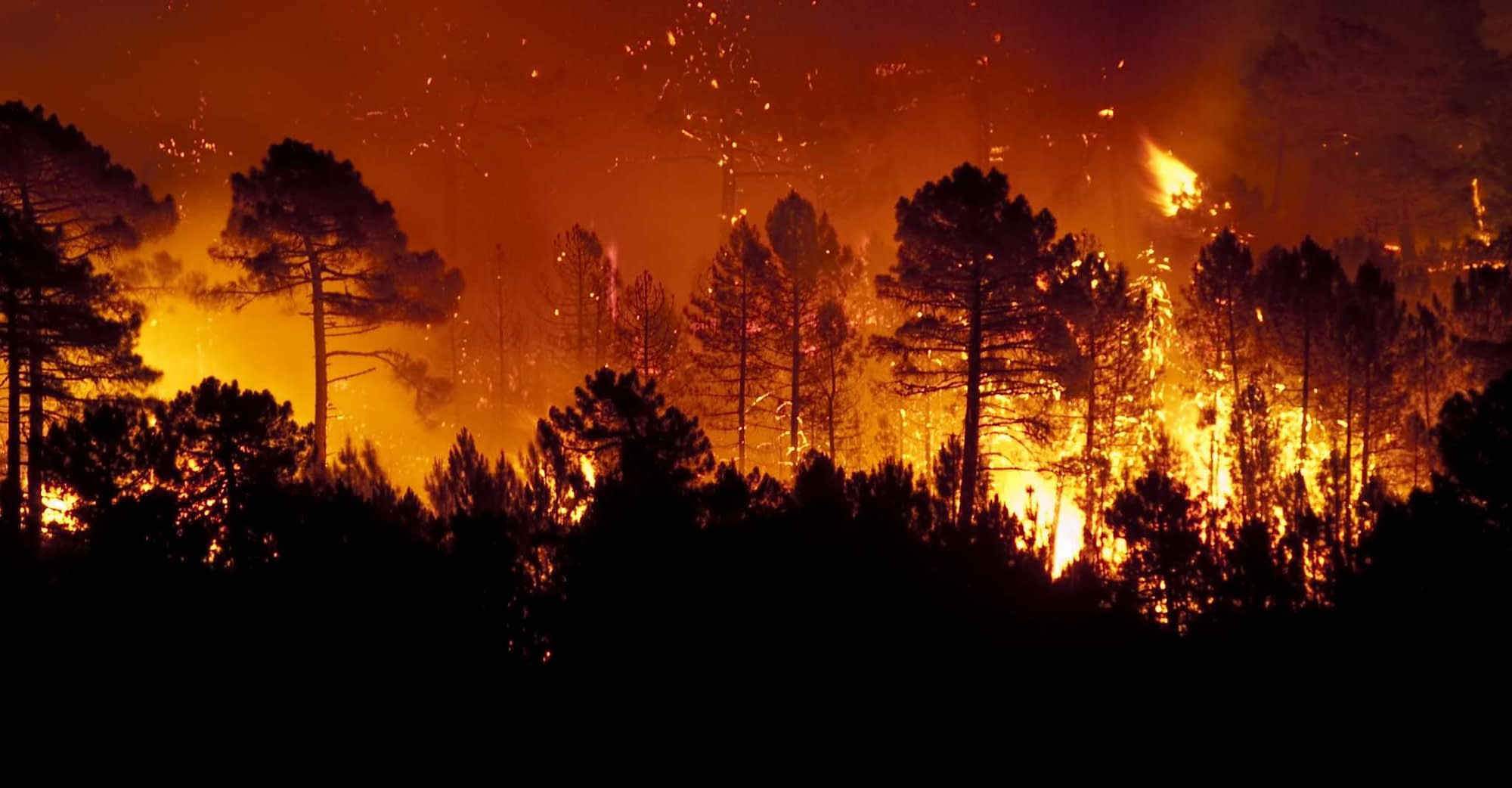Learn how insurers can improve measuring wildfire risk with geolocation data.   WaterStreet Company