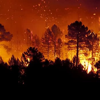 Learn how insurers can improve measuring wildfire risk with geolocation data. | WaterStreet Company